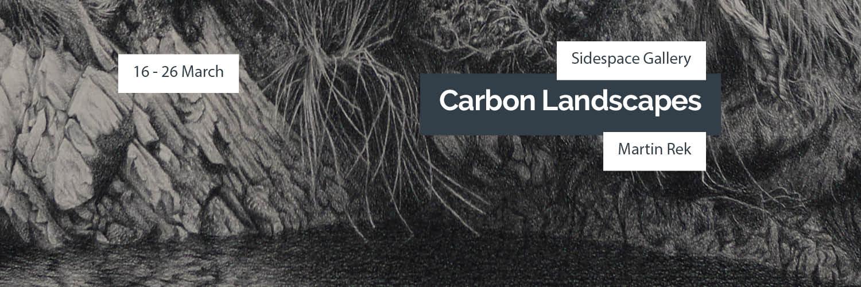 CARBON-LANDSCAPES